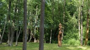 Gyvybės medis. Ąžuolas. h 300.